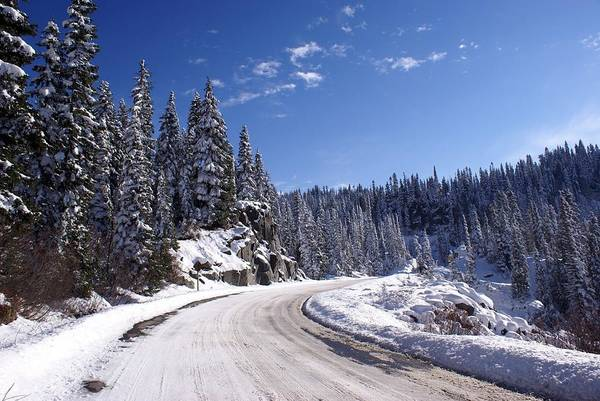 Winter On Chinnook Pass Poster