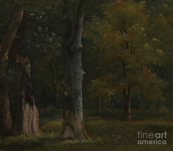 Trees In The Bois De Boulogne Poster