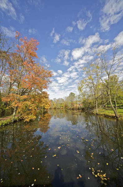 Autumn Colors On The Delaware And Raritan Canal Poster