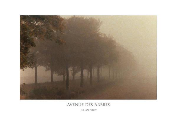 Avenue Des Arbres Poster