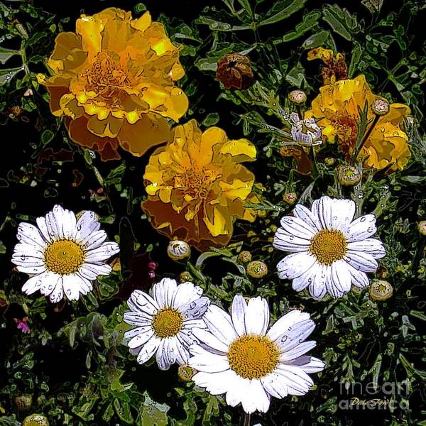 Daisies And Marigolds Poster