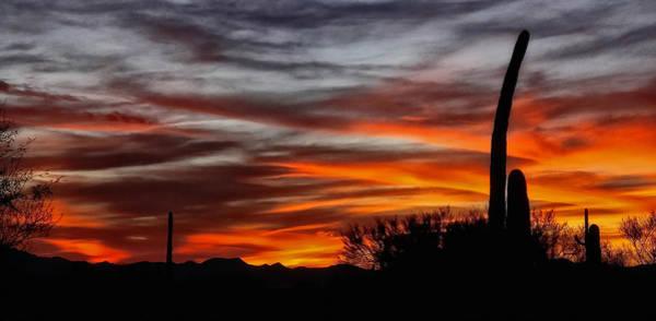 December Sunset Poster