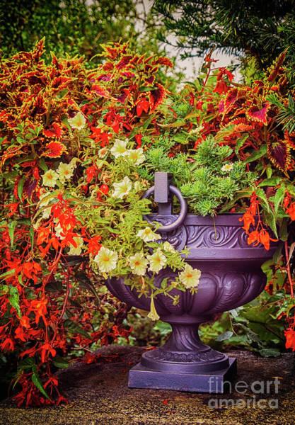 Decorative Flower Vase In Garden Poster