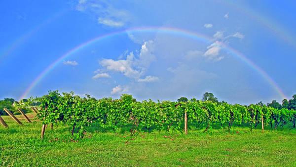 Double Rainbow Vineyard, Smith Mountain Lake Poster