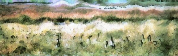 Geese In Grass Poster