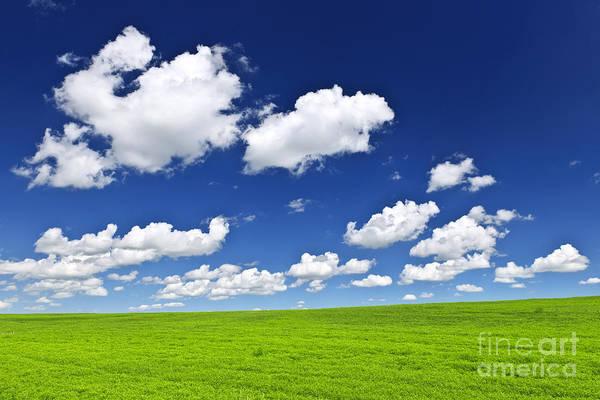 Green Rolling Hills Under Blue Sky Poster