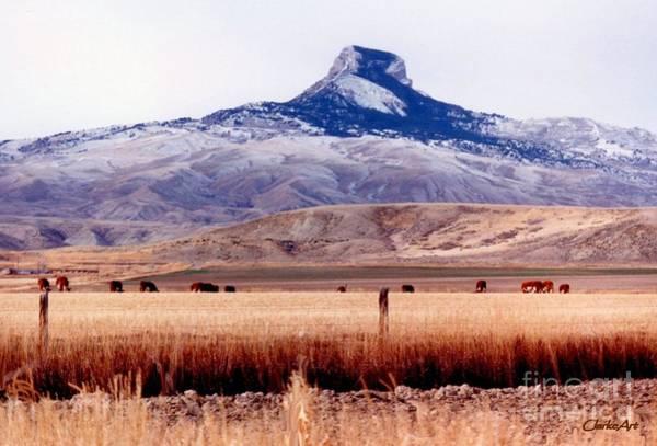 Hart Mountain - Cody,  Wyoming Poster