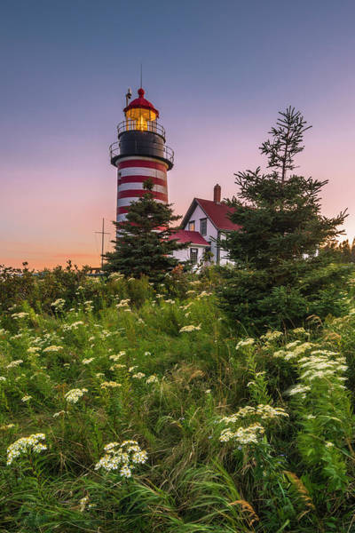Maine West Quoddy Head Light At Sunset Poster