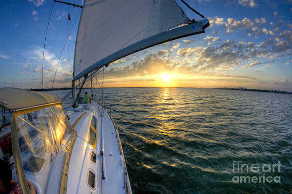 Sailing Sunset Charleston Sc Beneteau 49 Poster