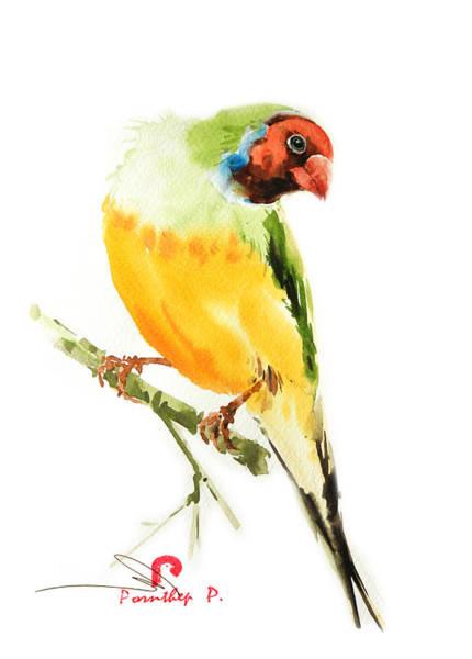 Tropical Bird Art Poster