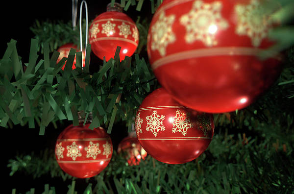 Christmas Baubels In A Tree Poster