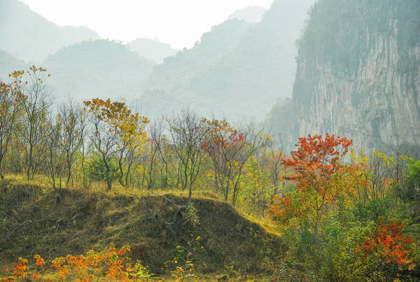 The Colorful Autumn Scenery Poster