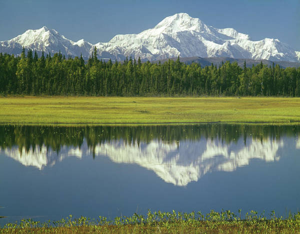 1m1325 Mt. Hunter And Mt. Denali Poster