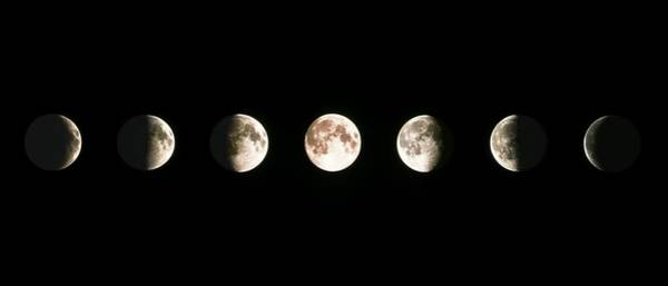 Composite Image Of The Phases Of The Moon Poster