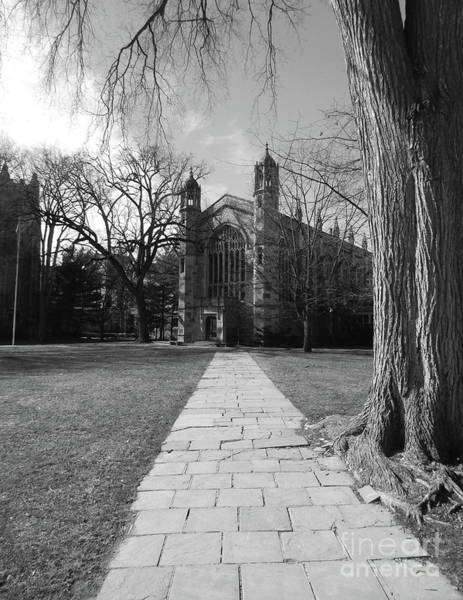 University Of Michigan Law Quad Poster