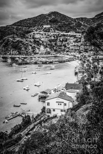 Catalina Island Avalon Bay Black And White Photo Poster