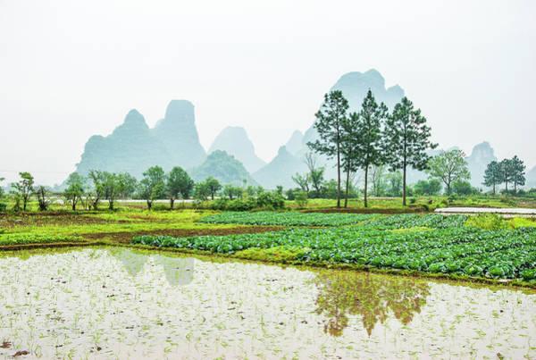 Karst Rural Scenery In Spring Poster