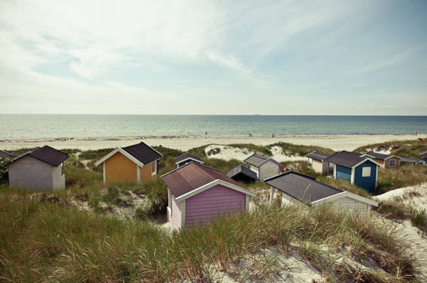 Beach Houses And Dunes Poster
