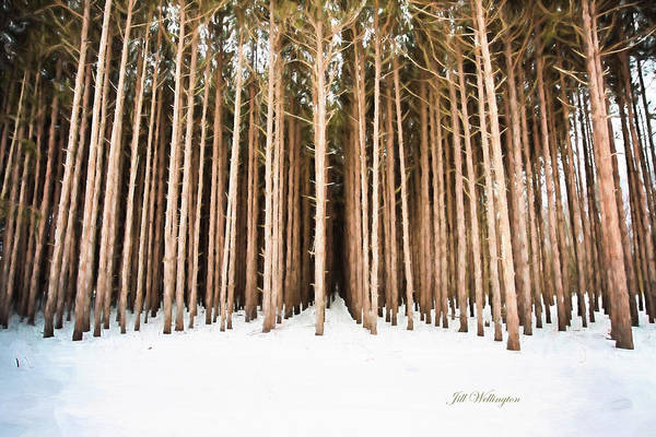 Michigan Winter Poster