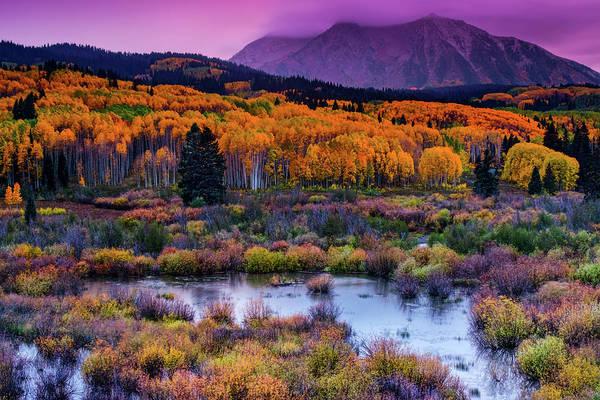 A Colorado Fall Along Kebler Pass Poster