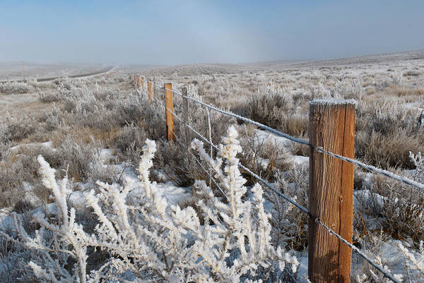 A Frosty And Foggy Morning On The Way To Steamboat Springs Poster