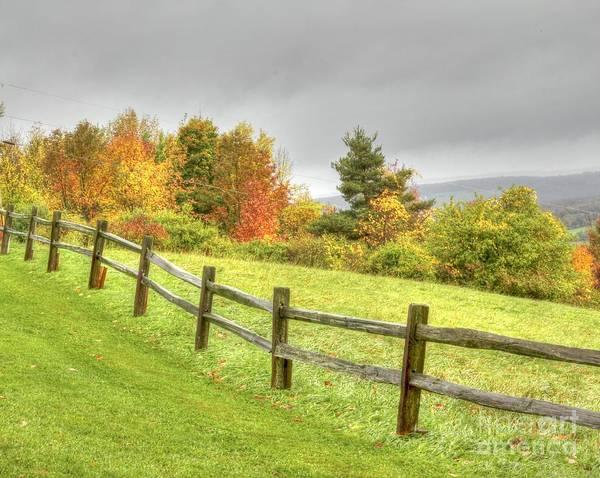 A Highland Forest Autumn Poster