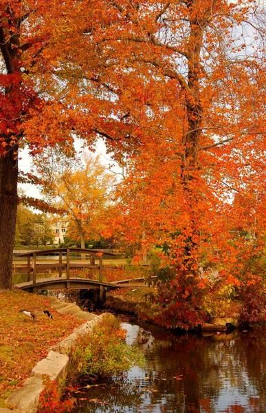A Morning In Autumn - Lake Carasaljo Poster