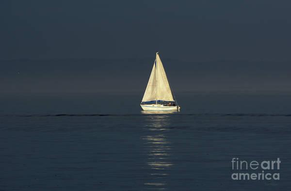 A Sailboat Capturing Light Poster