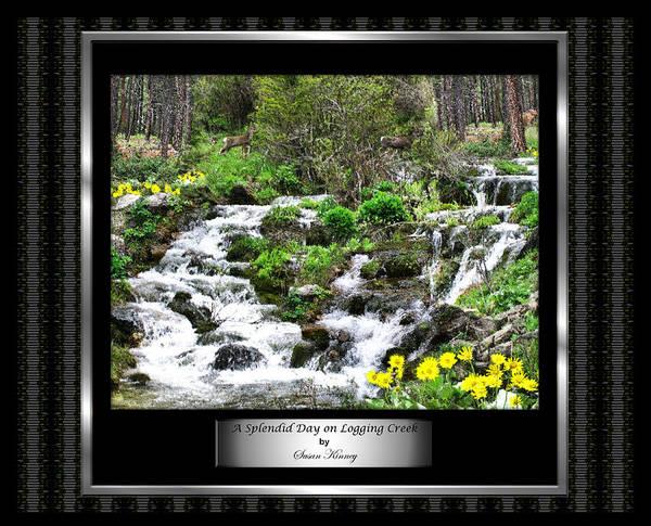 A Splendid Day On Logging Creek Poster