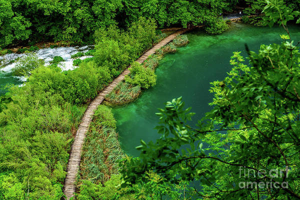 Above The Paths At Plitvice Lakes National Park, Croatia Poster