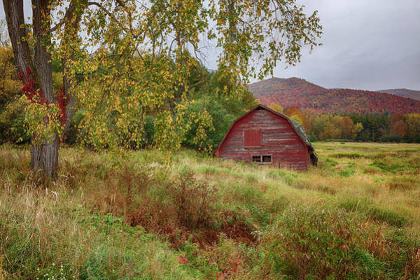 Adirondack Barn In Autumn Poster