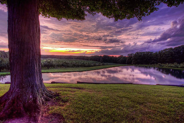 After The Storm At Mapleside Farms Poster