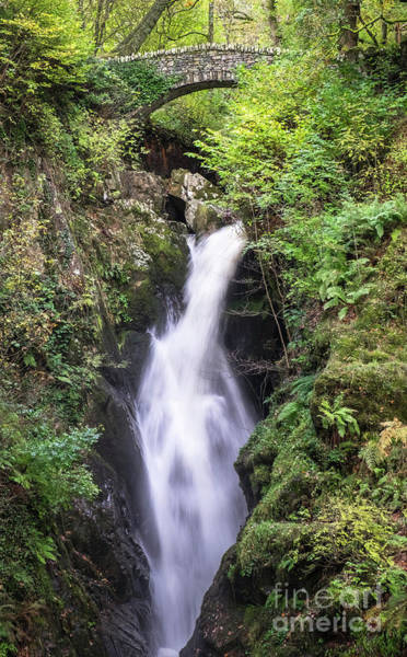 Aira Force #2 Poster