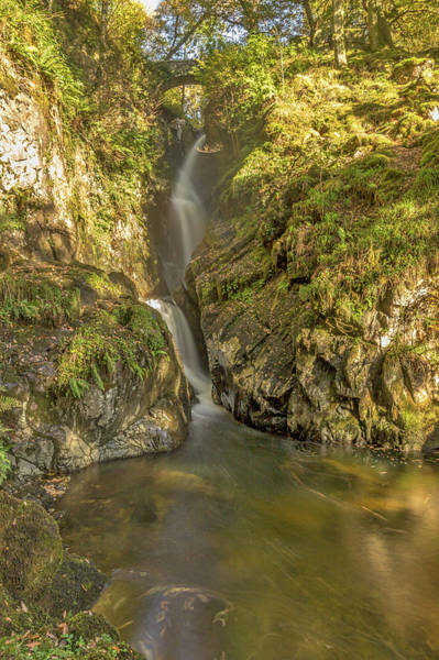 Aira Force. Poster