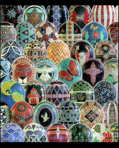 All Ostrich Eggs Collage Poster