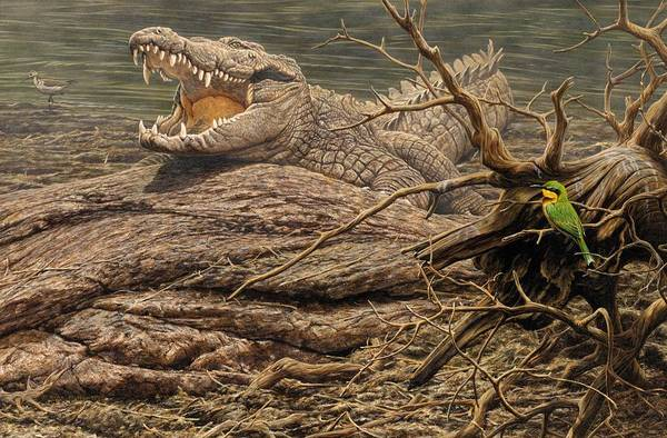 Poster featuring the painting Alligator by Alan M Hunt