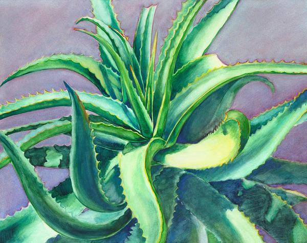 Aloe Vera Watercolor Poster