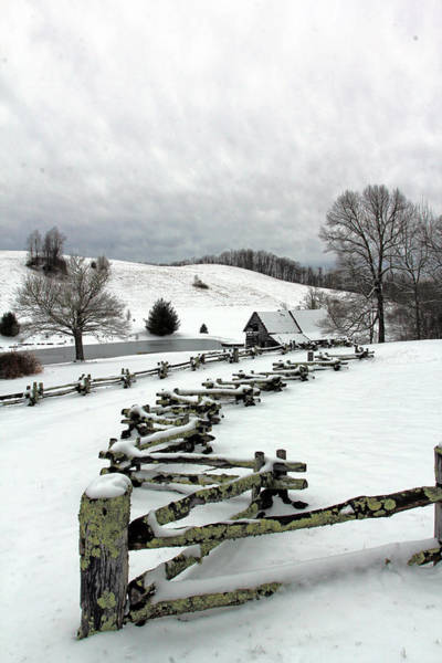 Along The Locust Rails In Winter Poster