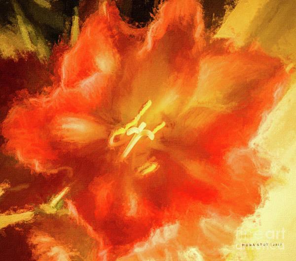 Amaryllis Orange Yellow Red Poster