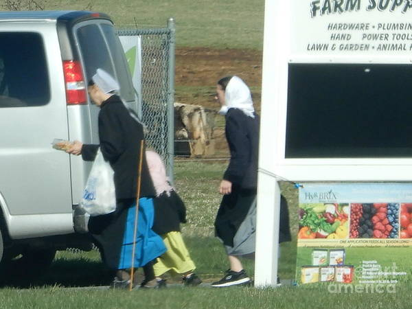 Amish Auction Poster