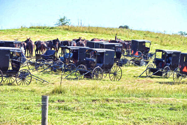 Amish Hillside Poster