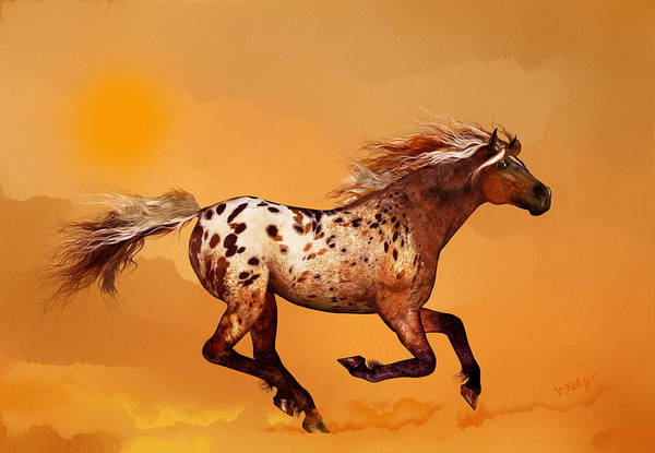 An Appaloosa Called Ginger Poster