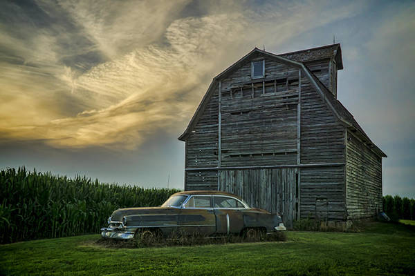 An Old Cadillac By A Barn And Cornfield Poster