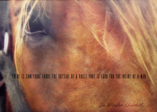 Andalusian Eye Quote Poster