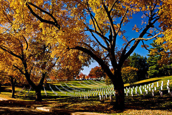 Arlington Cemetery In The Fall Poster
