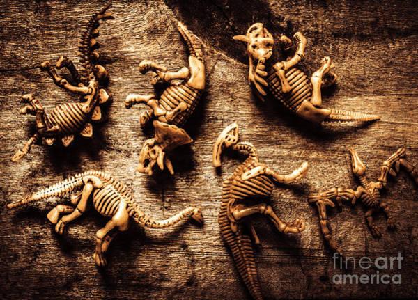 Art In Palaeontology Poster