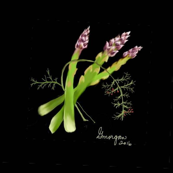 Asparagas  Poster