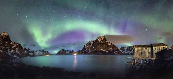 Aurora Above Reinefjord Poster