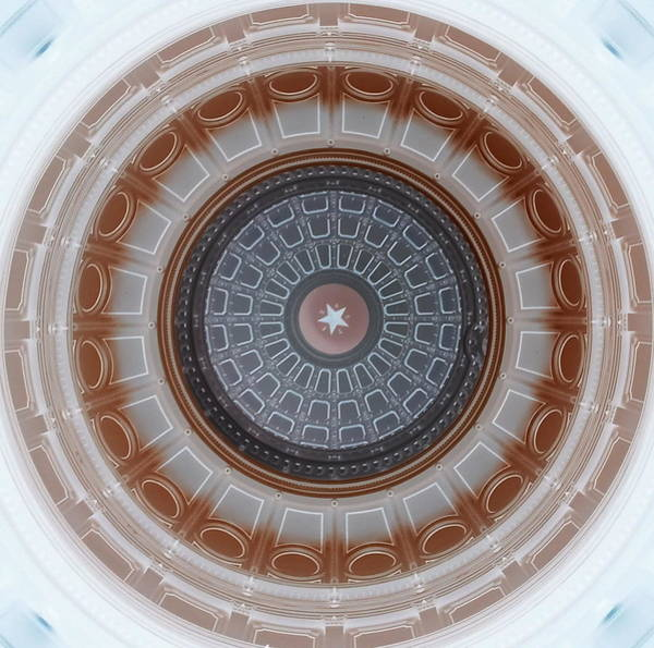 Austin Capitol Dome In Gray And Brown Poster