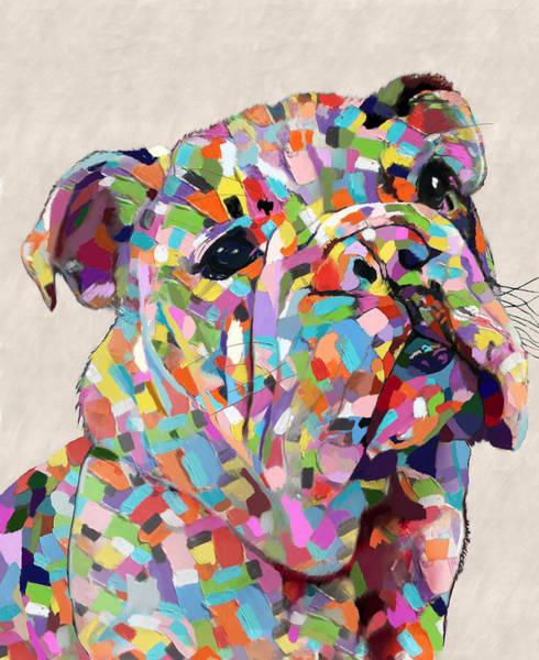 Australian Bulldog  Poster